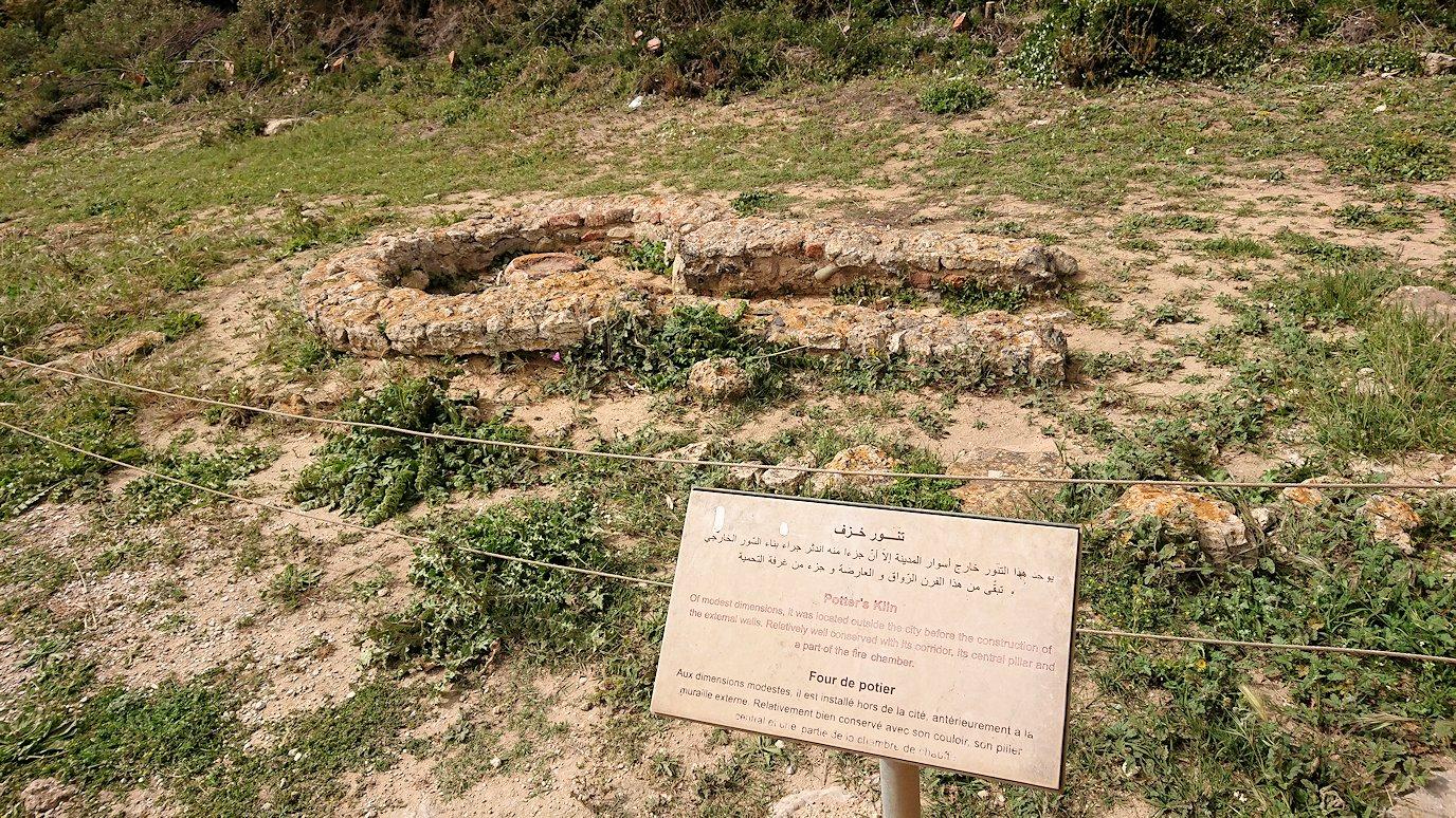 チュニジア:ボン岬のケルクアン遺跡を見学していく9