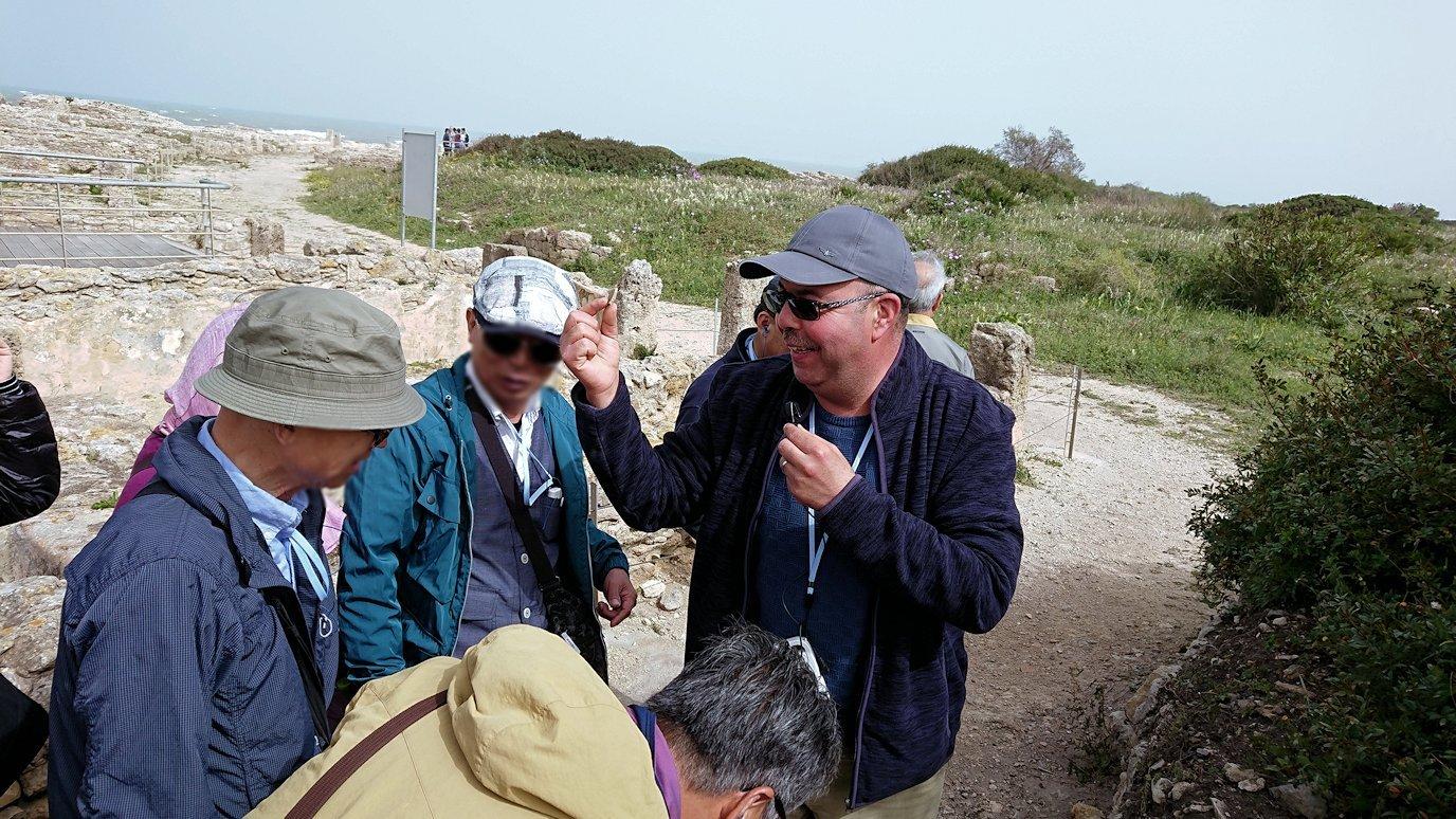 チュニジア:ボン岬のケルクアン遺跡を観光6