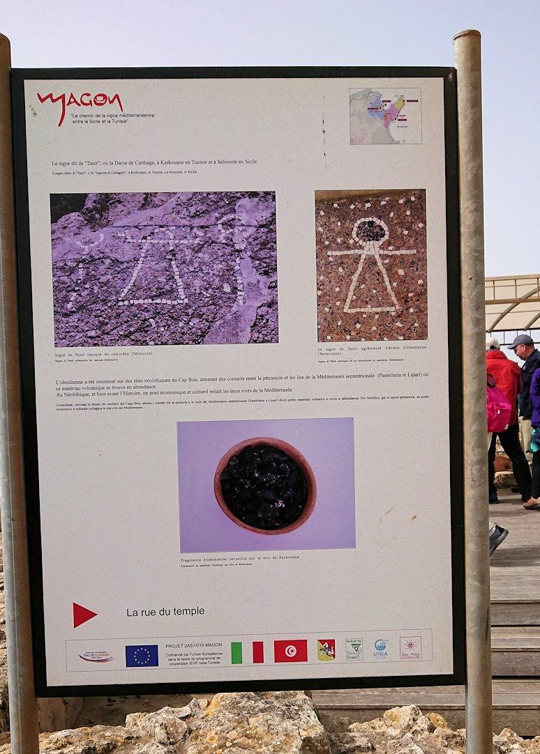 チュニジア:ボン岬のケルクアン遺跡内のタニト神を拝む