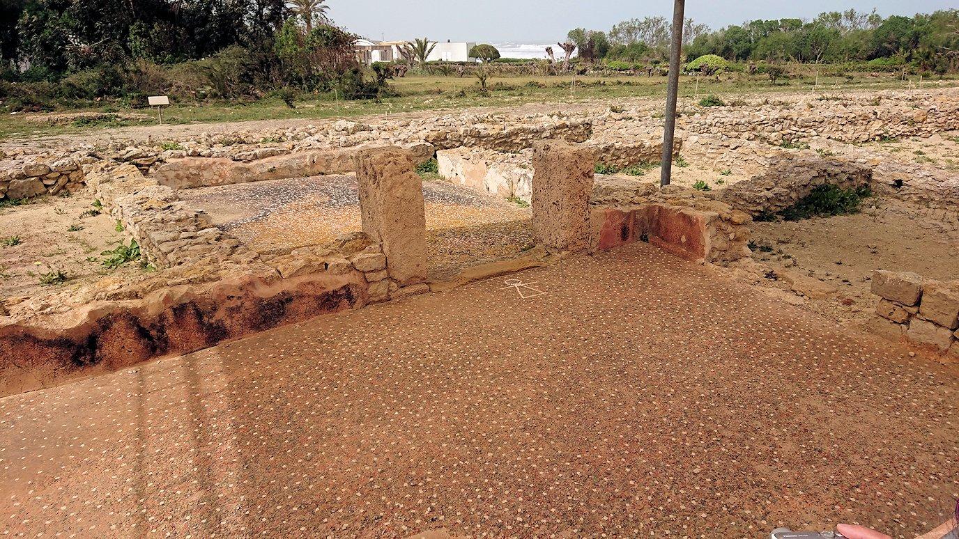 チュニジア:ボン岬のケルクアン遺跡内のタニト神を拝む5
