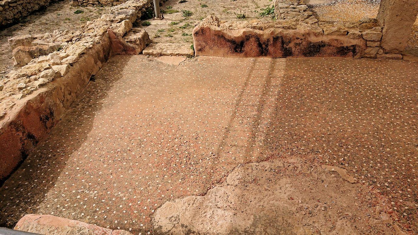 チュニジア:ボン岬のケルクアン遺跡内のタニト神を拝む7