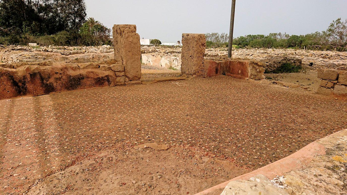 チュニジア:ボン岬のケルクアン遺跡内のタニト神を拝む8