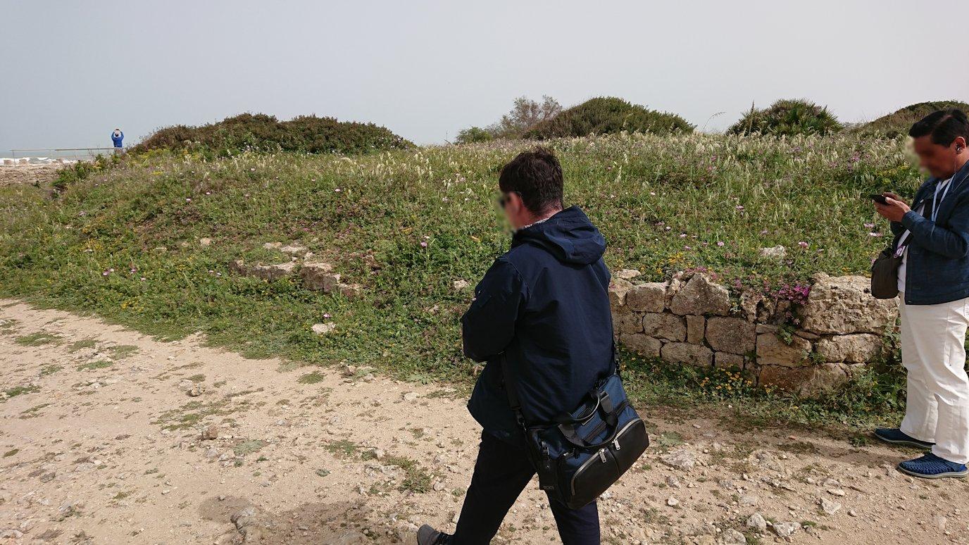 チュニジア:ボン岬のケルクアン遺跡内のタニト神を拝む1
