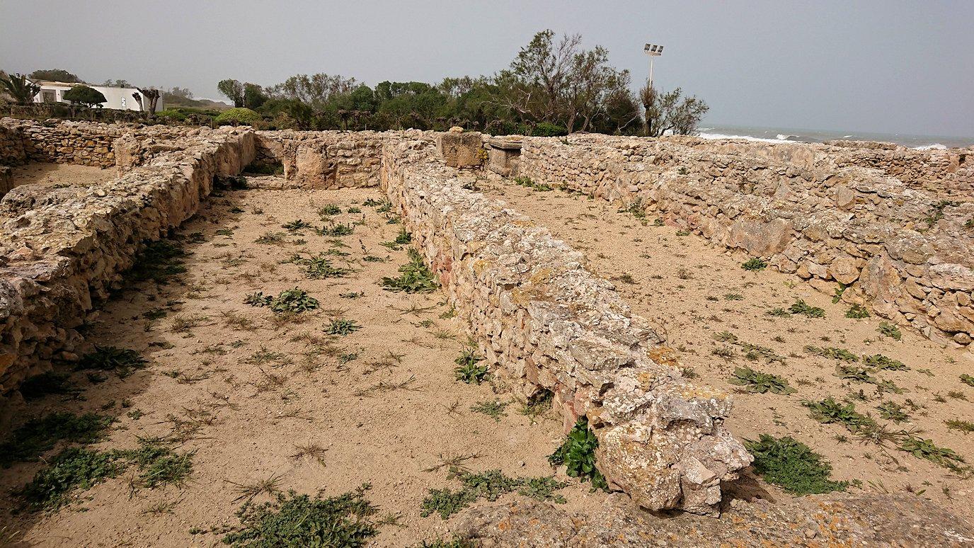 チュニジア:のケルクアン遺跡内の住居部分を見学4