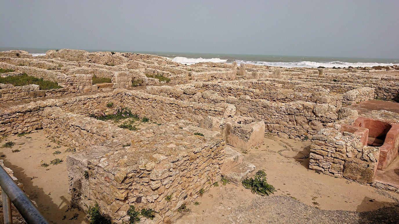 チュニジア:のケルクアン遺跡内の住居部分を見学8