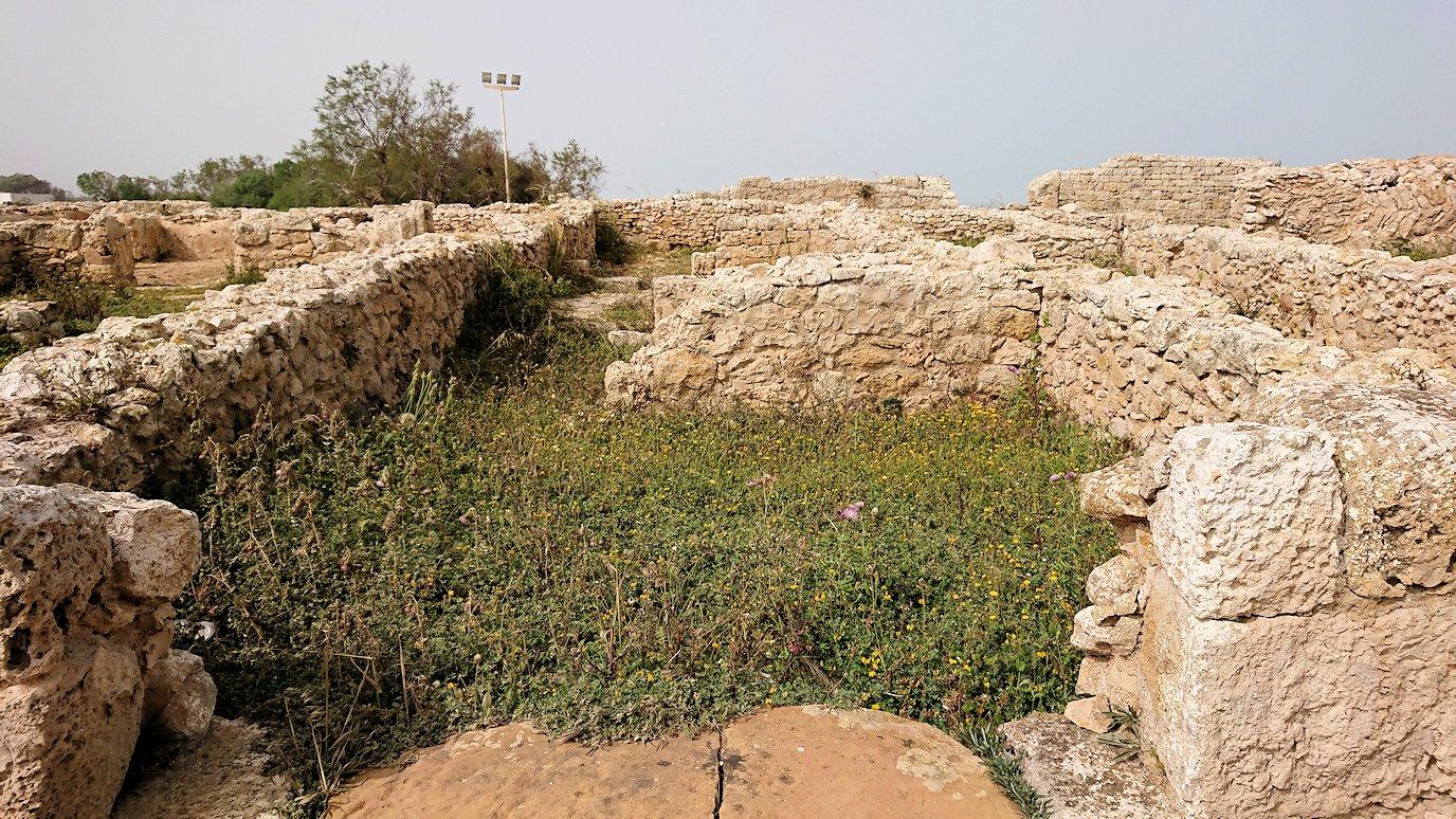 チュニジア:のケルクアン遺跡内の風呂跡を見てみる4