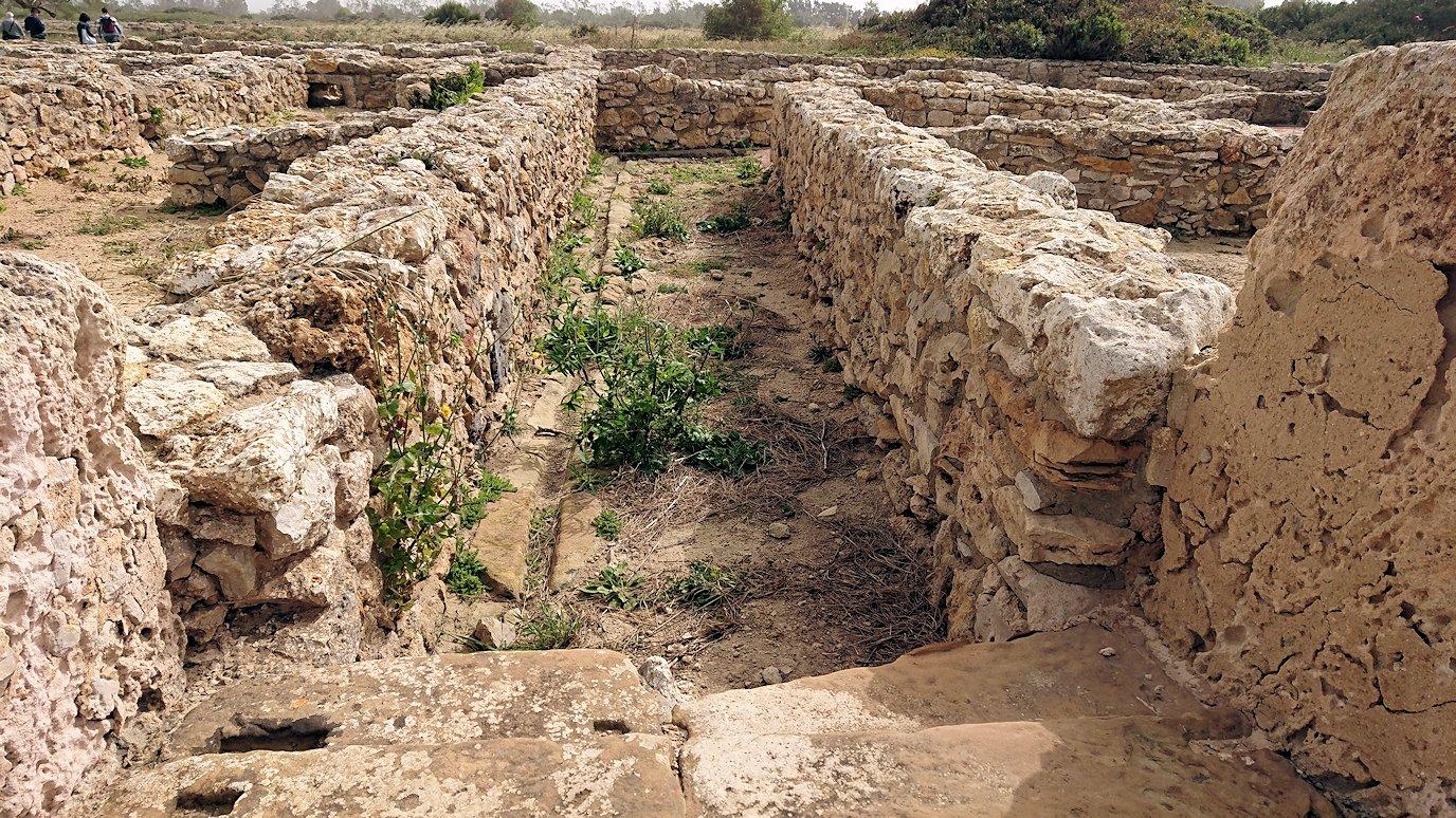 チュニジア:のケルクアン遺跡内の風呂跡を見てみる7