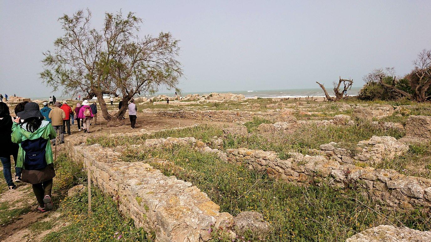 チュニジア:のケルクアン遺跡の散策はまだまだ続く3