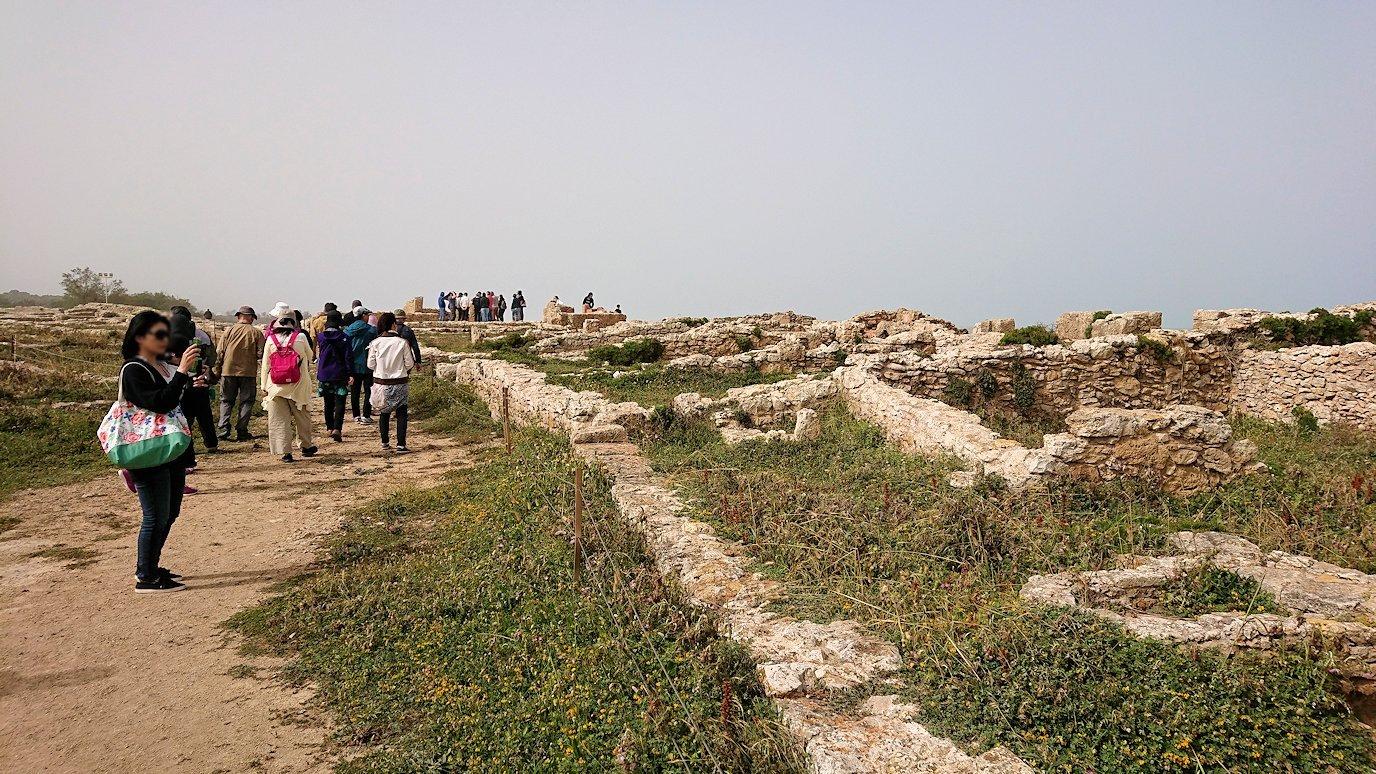 チュニジア:のケルクアン遺跡の散策はまだまだ続く7