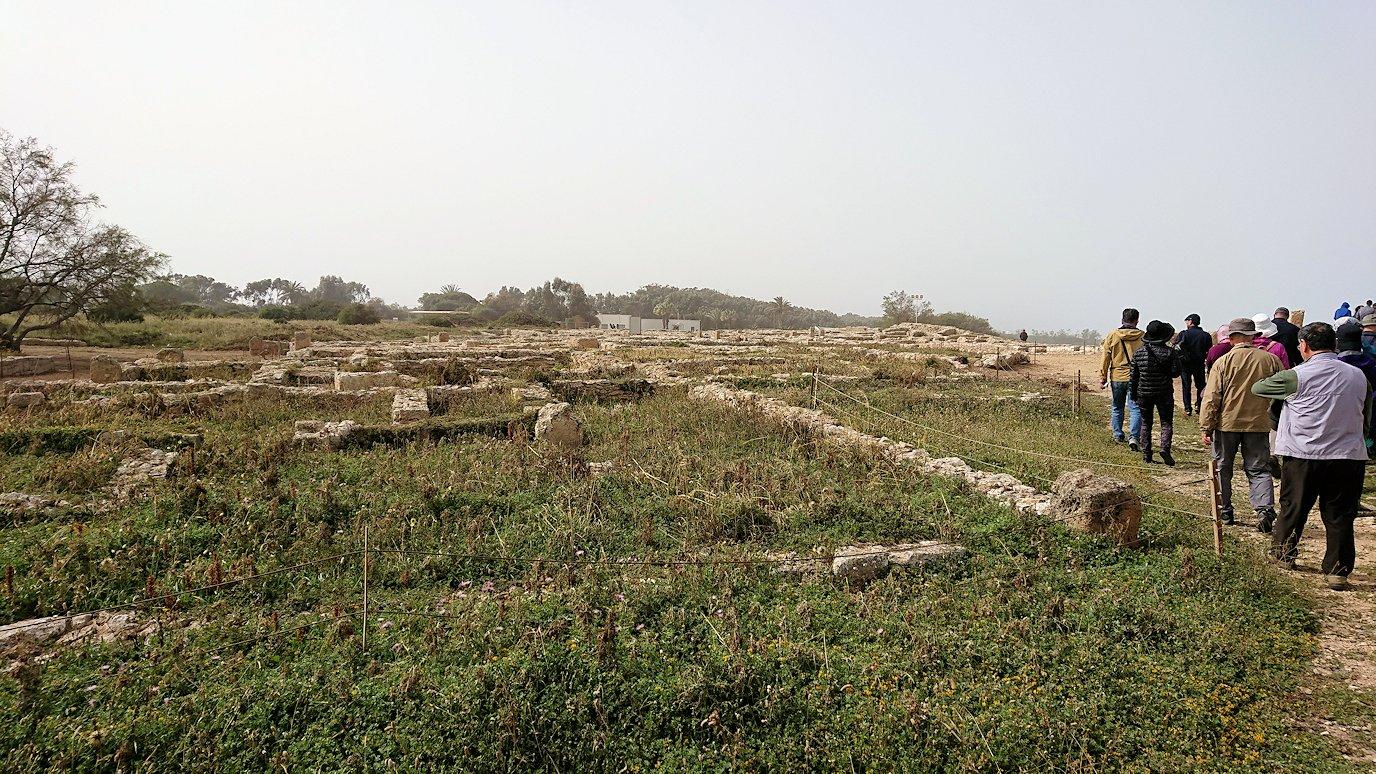 チュニジア:のケルクアン遺跡の散策はまだまだ続く8