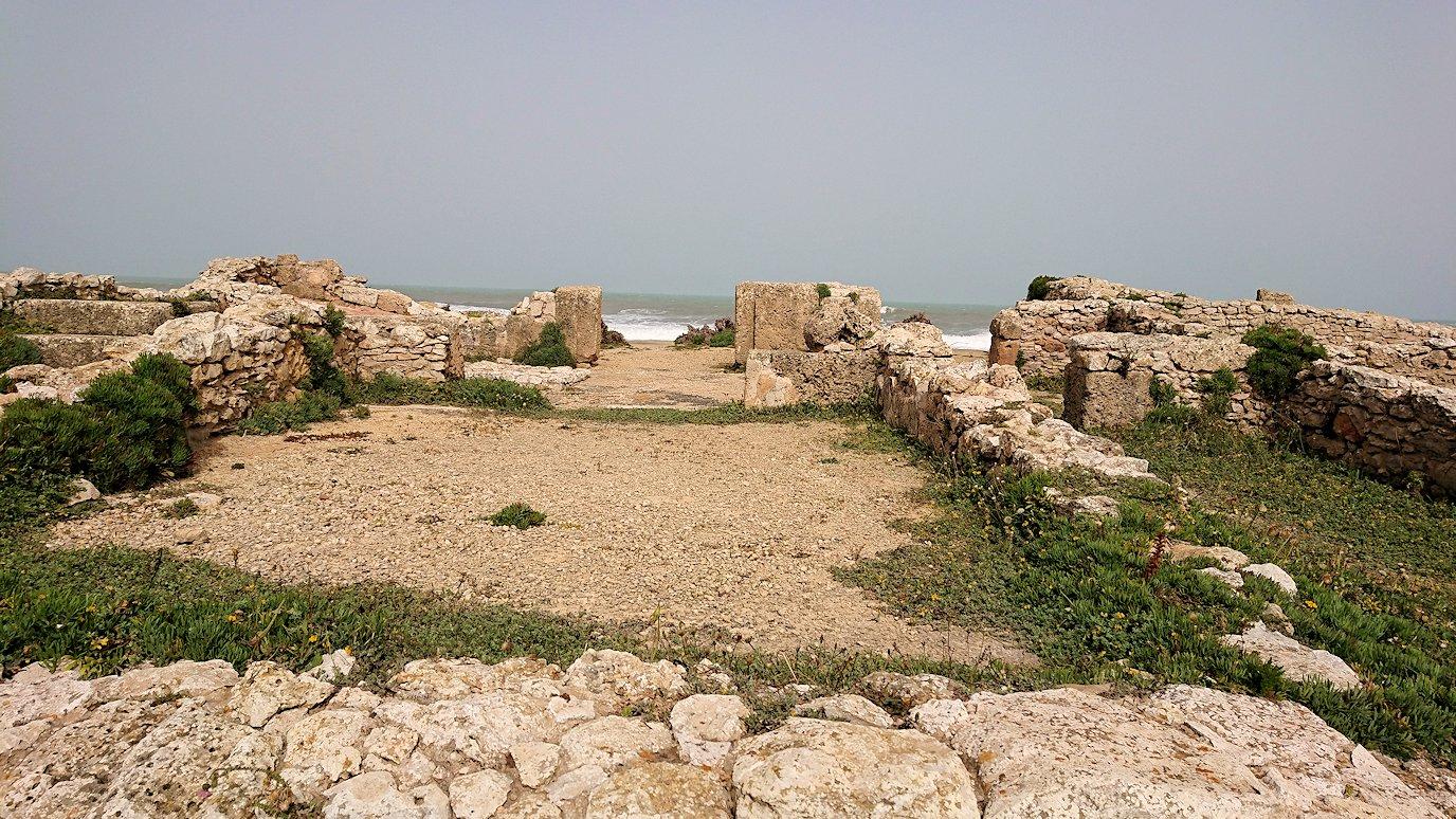 チュニジア:のケルクアン遺跡の散策はまだまだ続く9