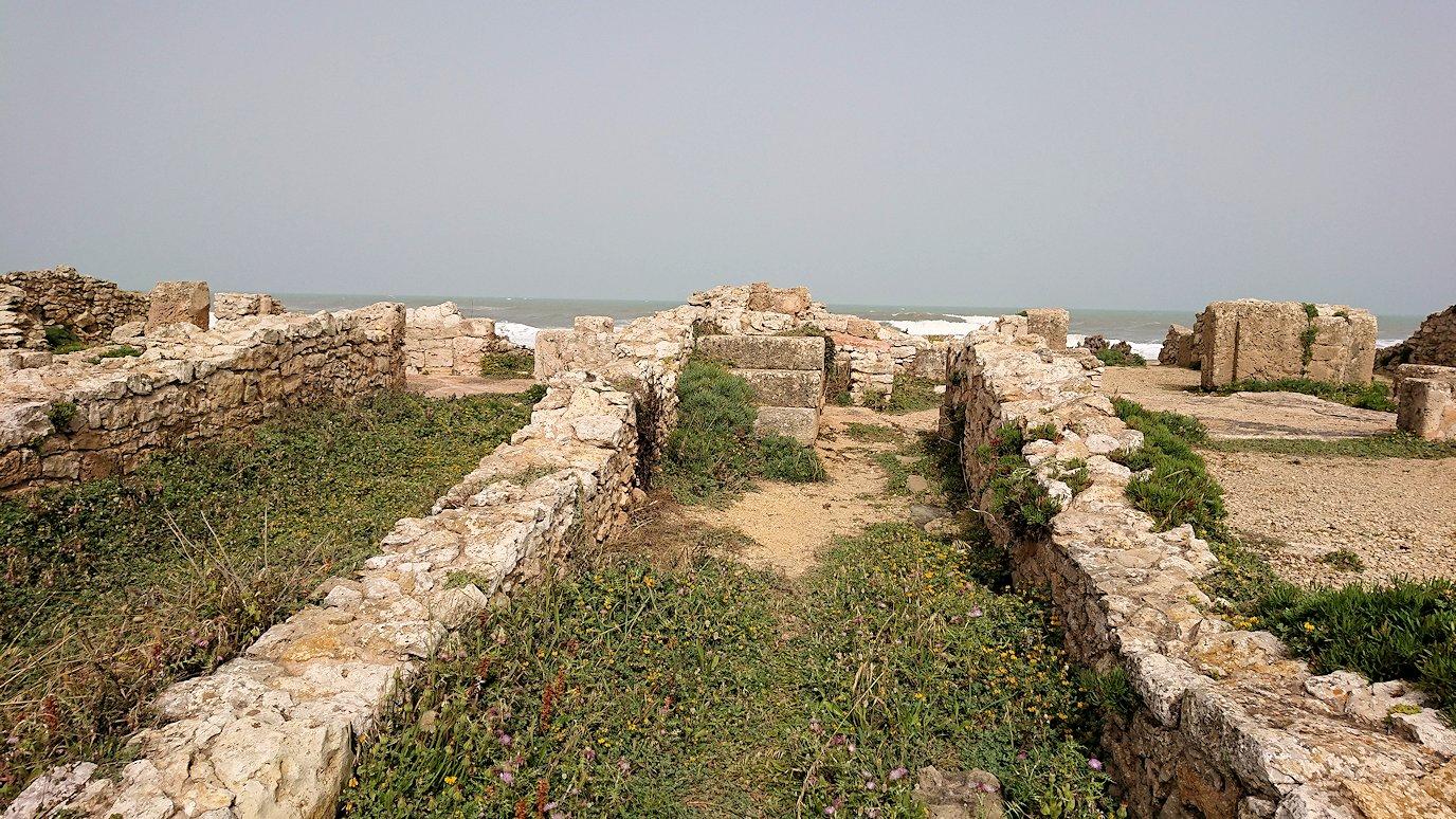 チュニジア:のケルクアン遺跡の海沿いを見学
