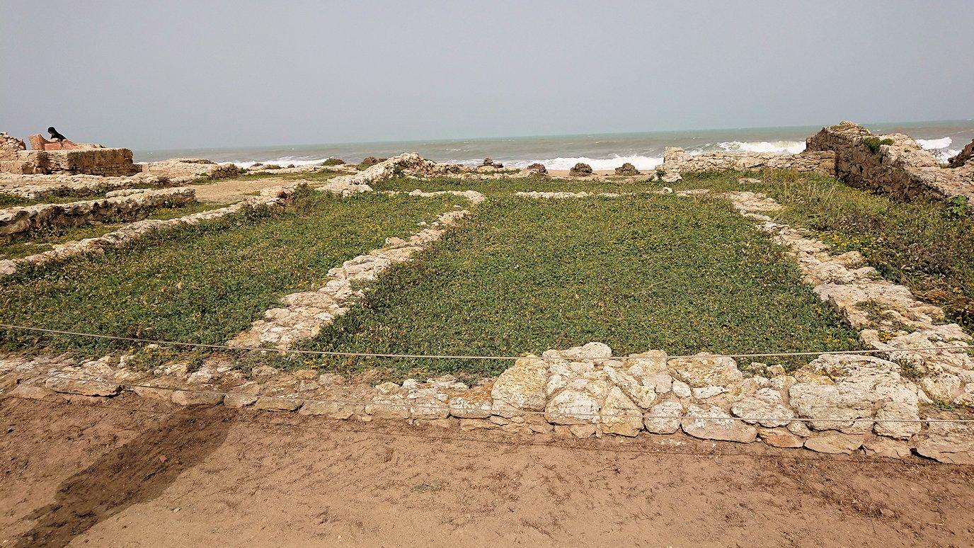 チュニジア:のケルクアン遺跡の海沿いを見学1