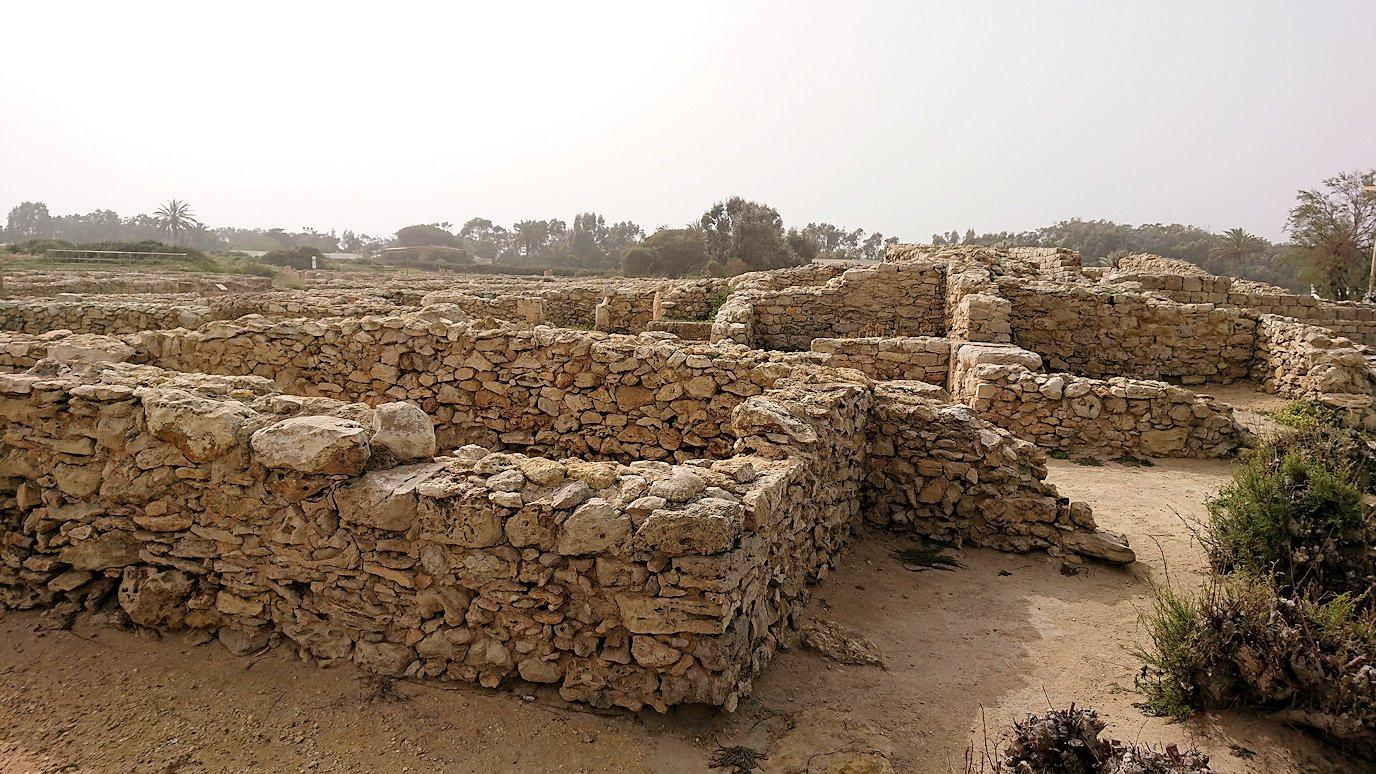 チュニジア:のケルクアン遺跡の海沿いの様子8