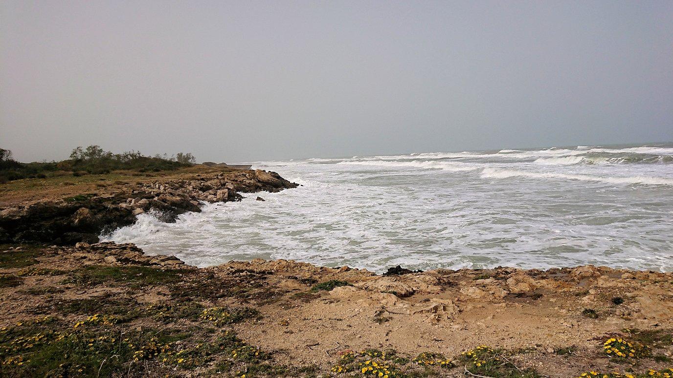 チュニジア:のケルクアン遺跡の海沿いの様子