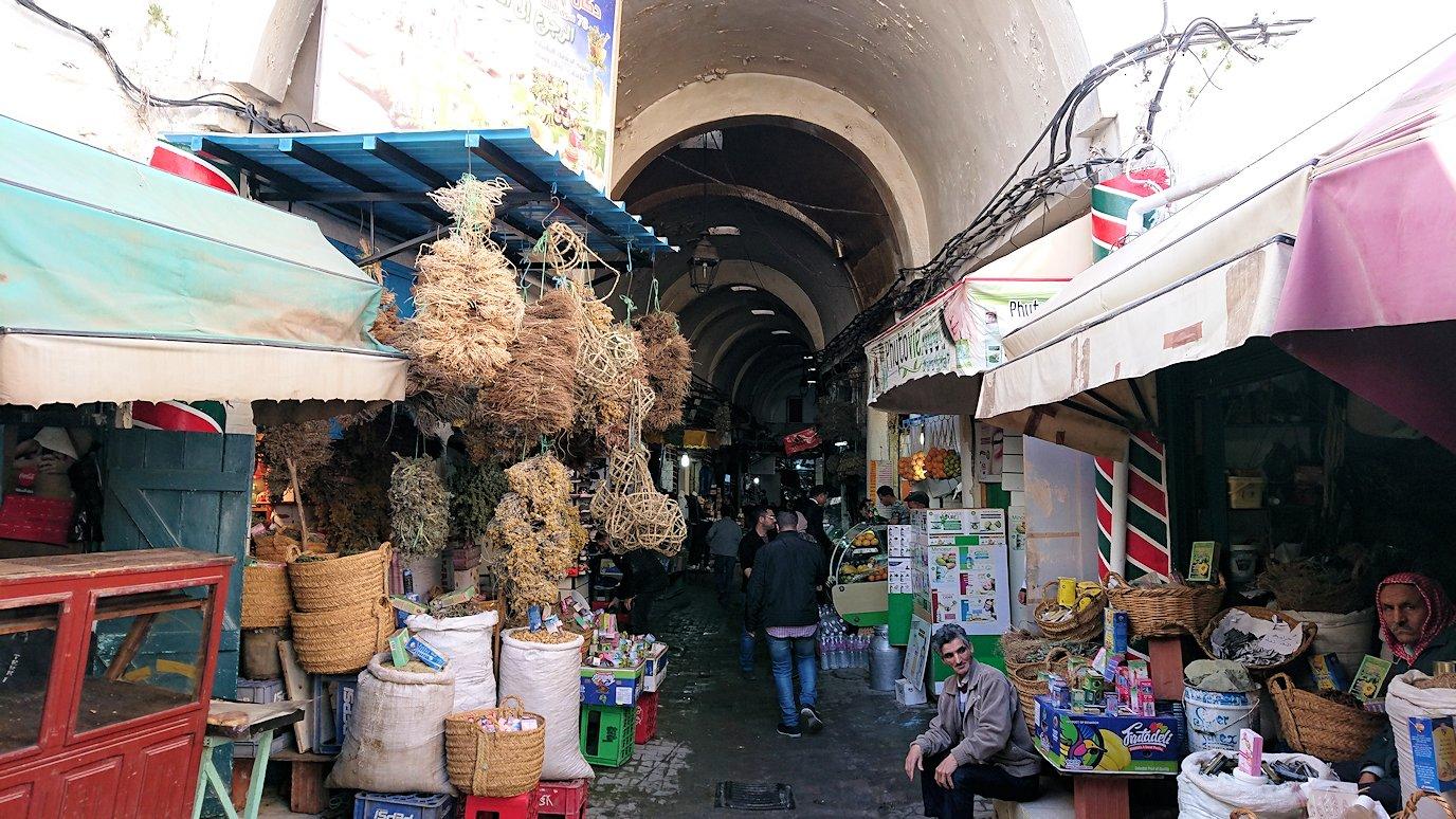 チュニジア:チュニスのメディナ自由時間に散策4