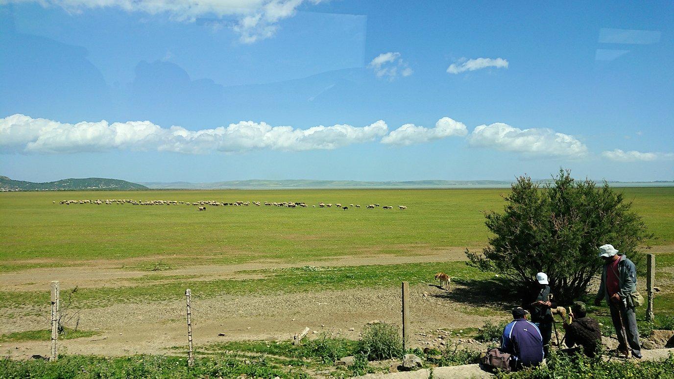 チュニジア:チュニスからイシュケウル国立公園の近くに来る5