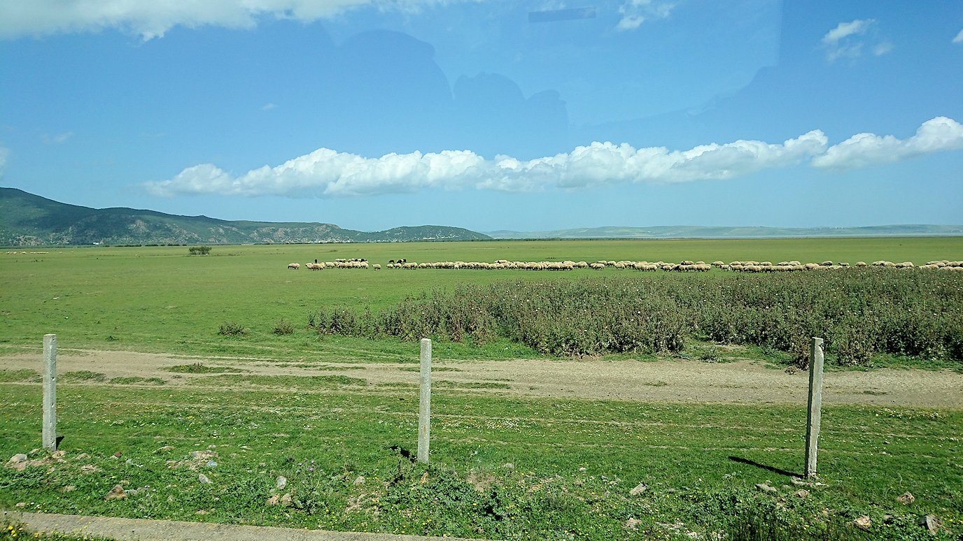 チュニジア:チュニスからイシュケウル国立公園の近くに来る6