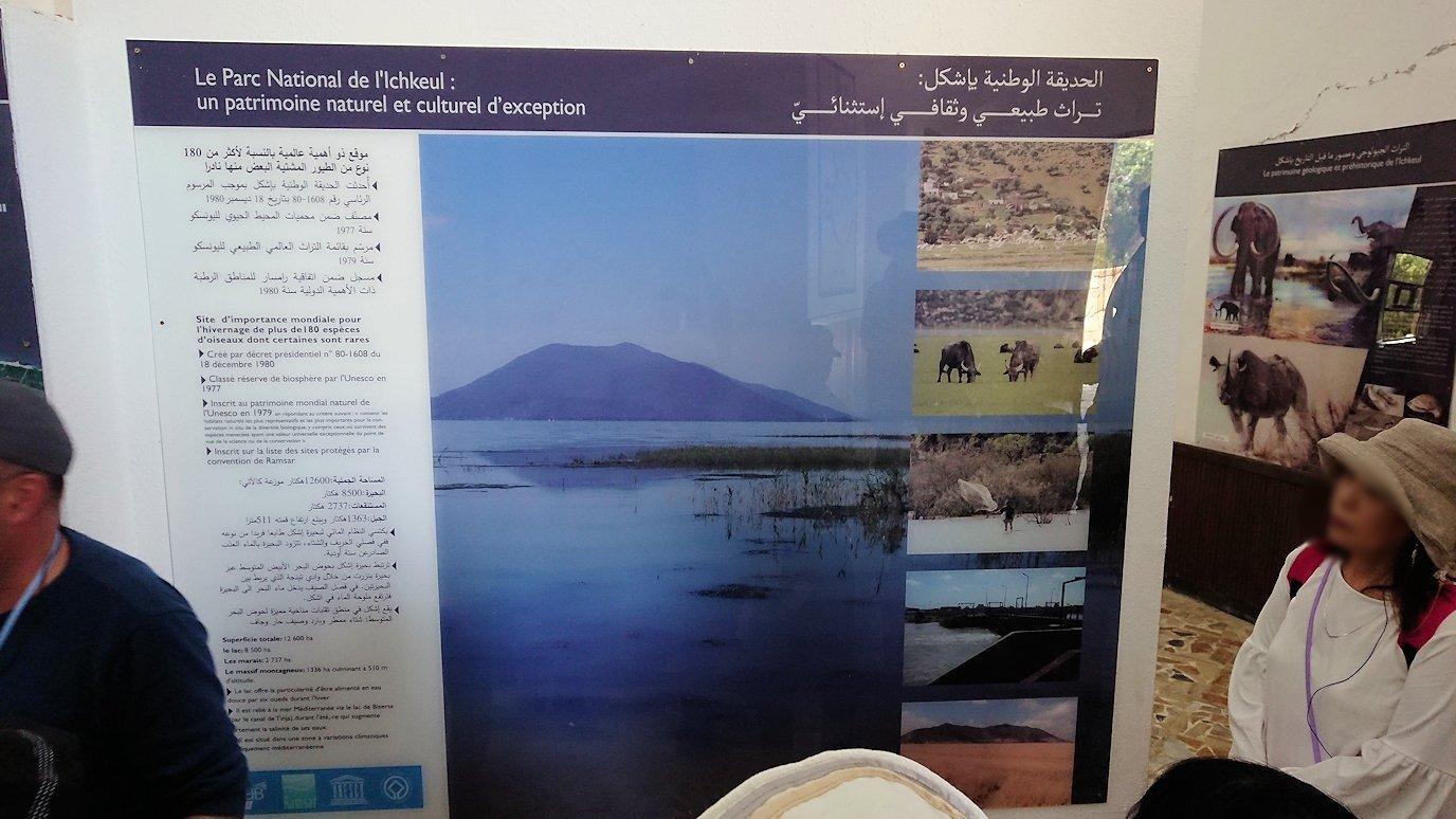 チュニジア:イシュケウル国立公園の頂上の自然博物館での様子1