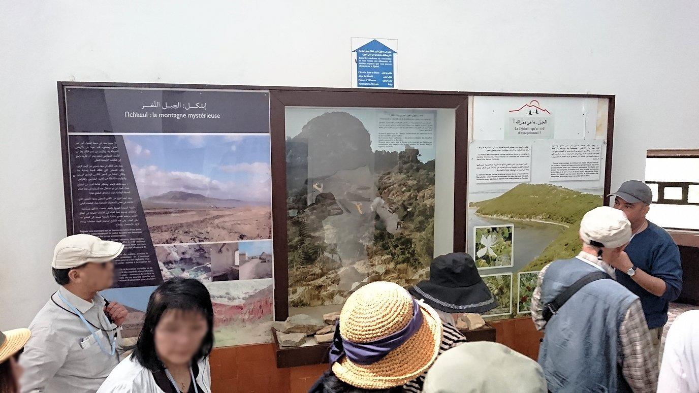 チュニジア:イシュケウル国立公園の頂上の自然博物館での様子7