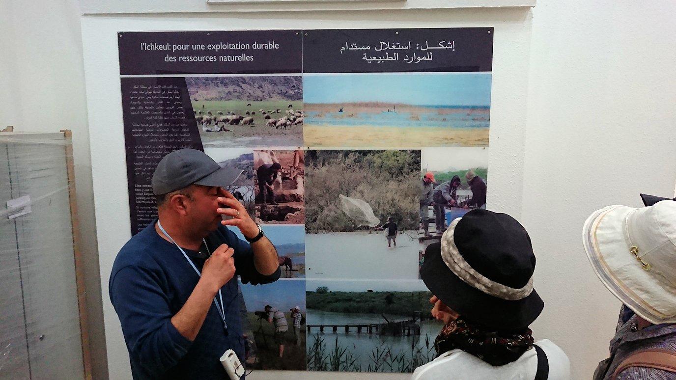 チュニジア:イシュケウル国立公園の頂上の自然博物館での様子9