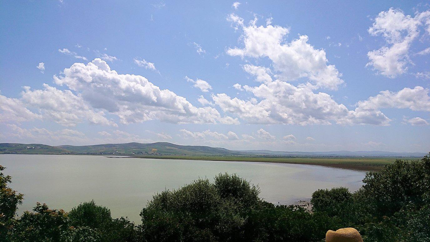 チュニジア:イシュケウル国立公園で記念撮影を7