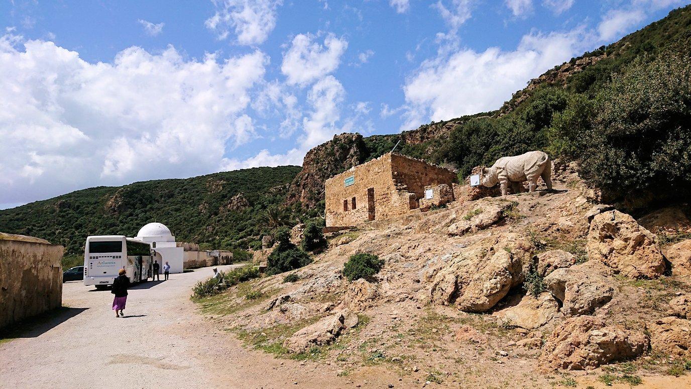 チュニジア:イシュケウル国立公園でくつろぐ6