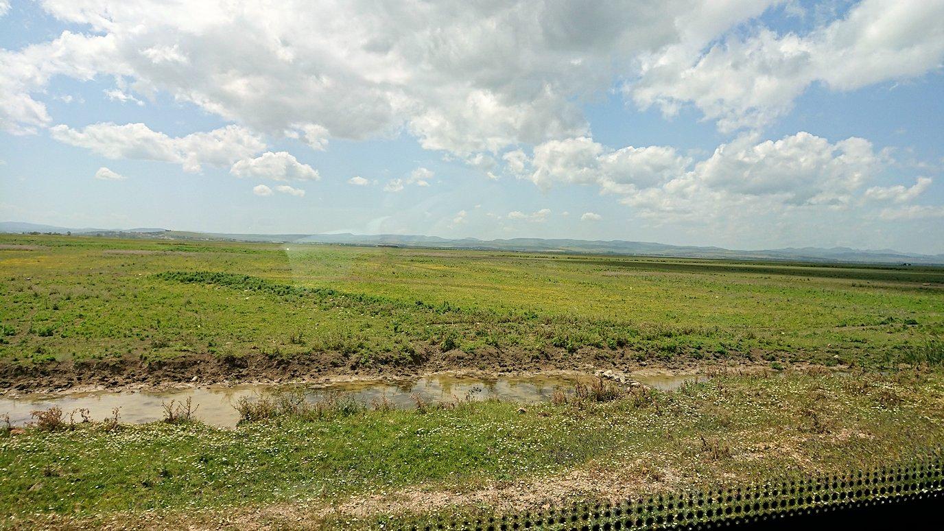 チュニジア:イシュケウル国立公園でくつろぐ3