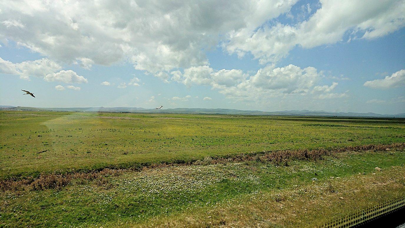 チュニジア:イシュケウル国立公園でくつろぐ4