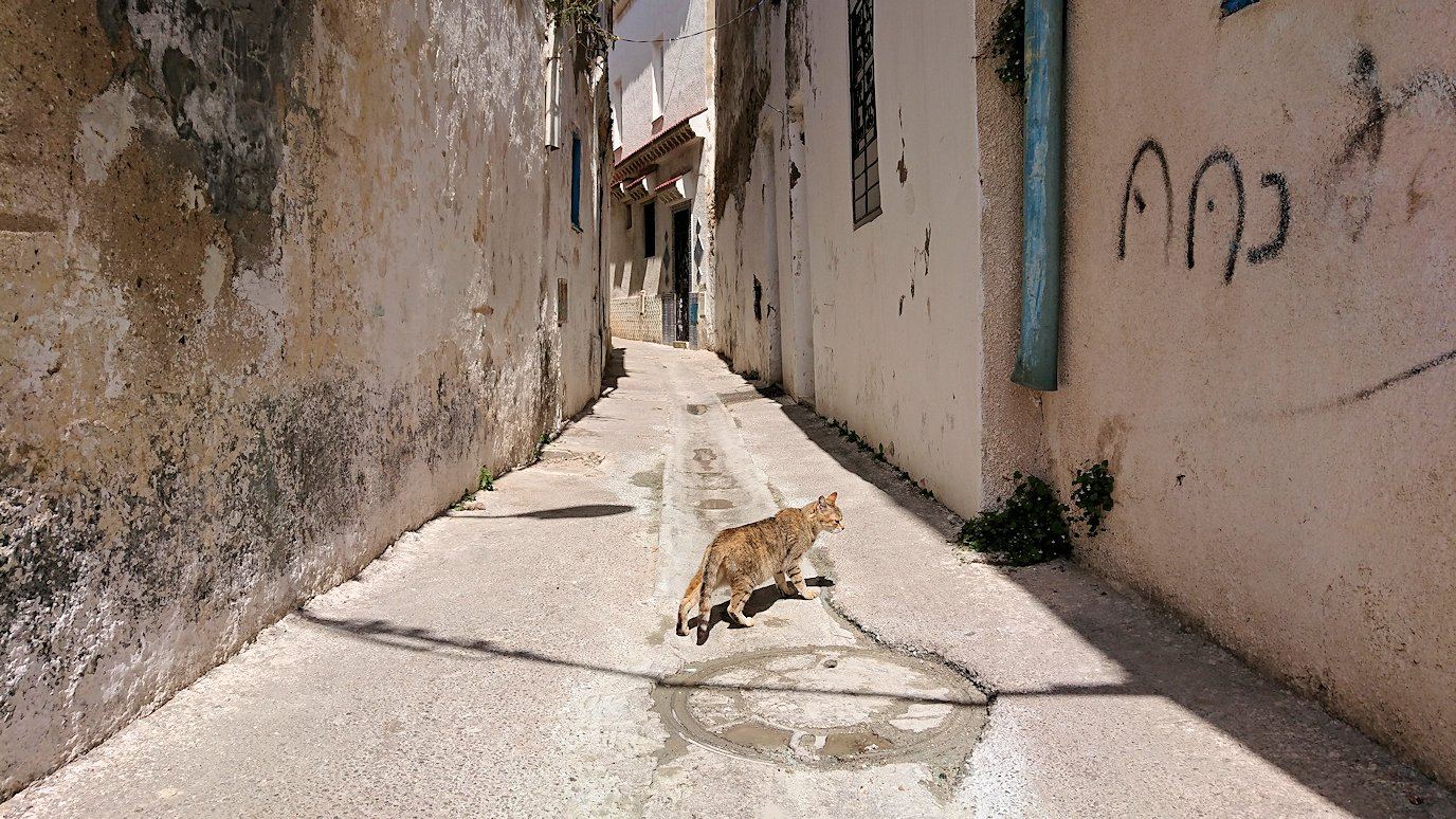 チュニジア:ビゼルトの街を歩いていく8