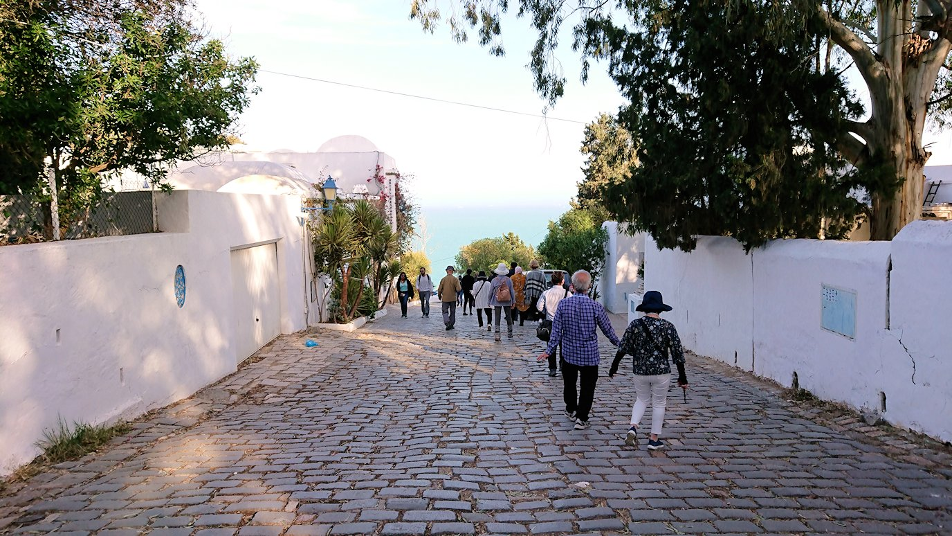 チュニジア:シディ・ブ・サイドの街の次なる絶景ポイントにて6