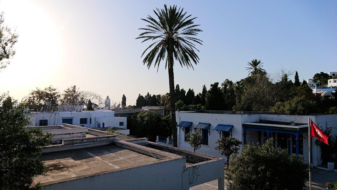 チュニジア:シディ・ブ・サイドで最後まで写真を撮り続ける4