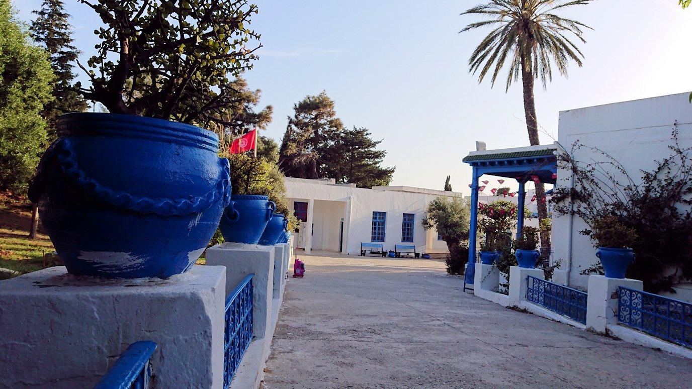 チュニジア:シディ・ブ・サイドで最後まで写真を撮り続ける7