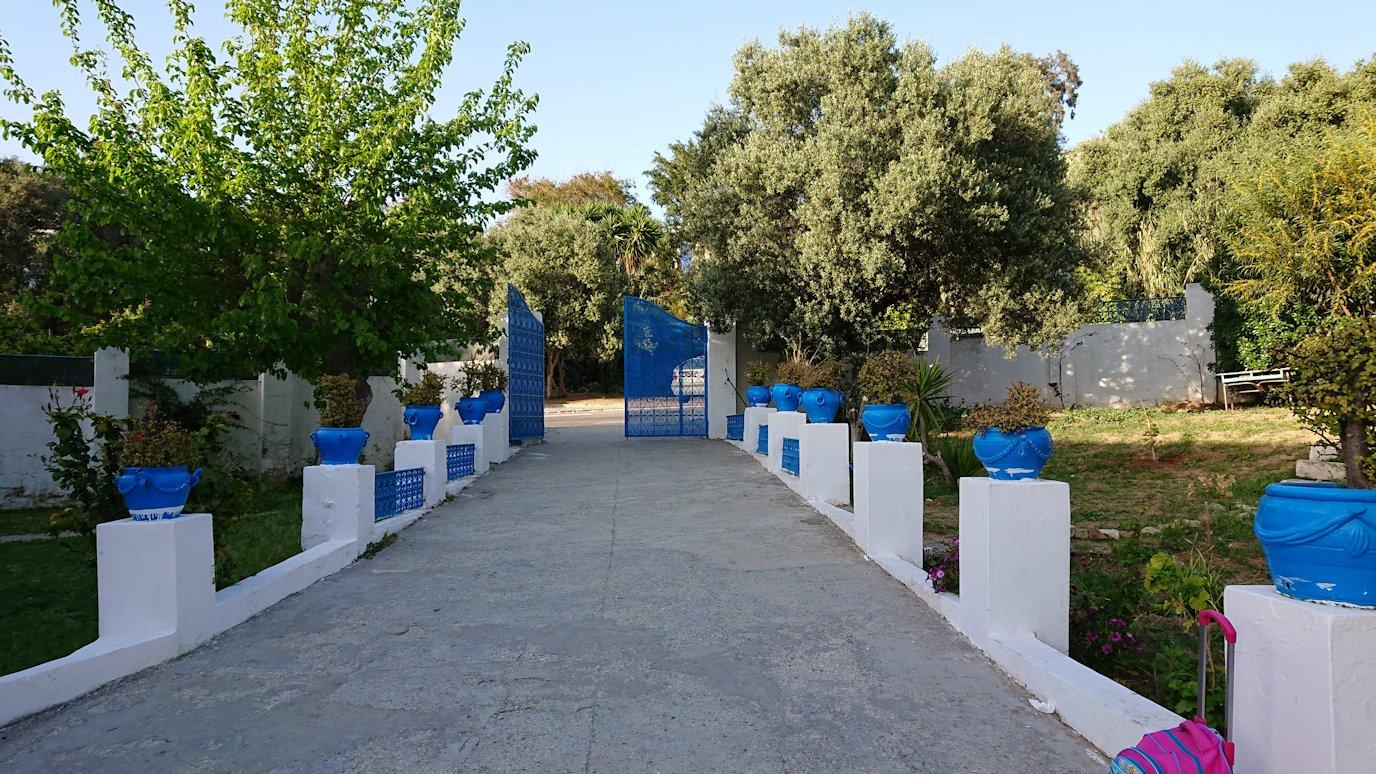 チュニジア:シディ・ブ・サイドで最後まで写真を撮り続ける9