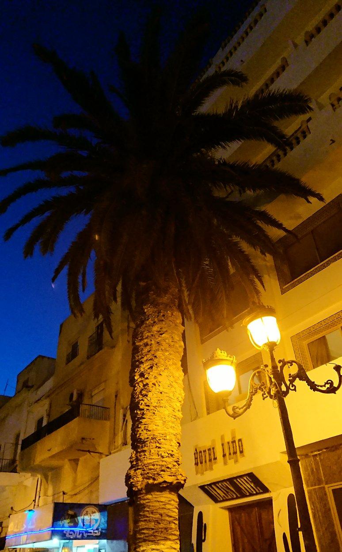 チュニジア:ラ・グレットにあるレストランからバスに戻る2