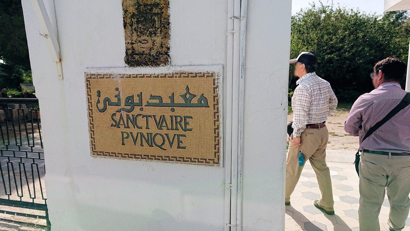 チュニジア:カルタゴ遺跡のトフェ(タニト神の聖域)に向かう1