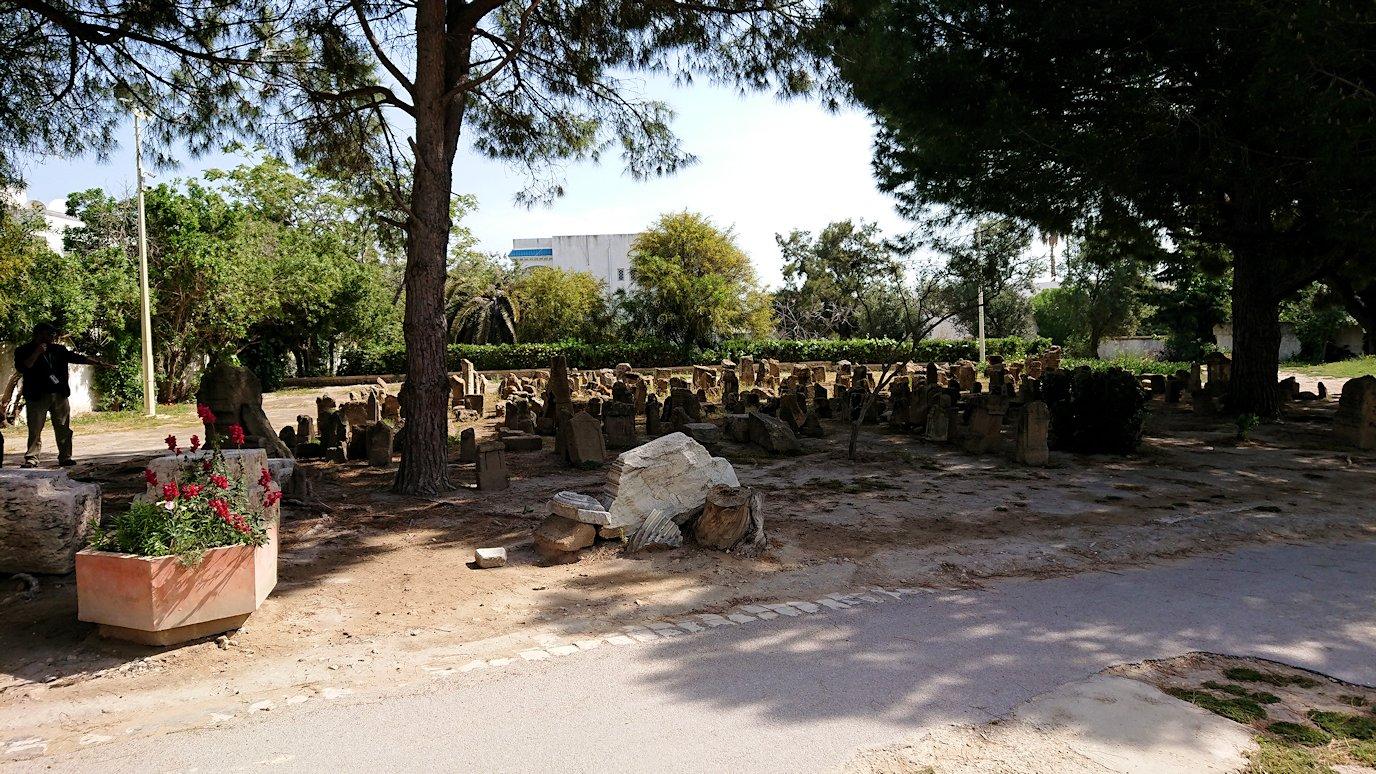 チュニジア:カルタゴ遺跡のトフェ(タニト神の聖域)に向かう3