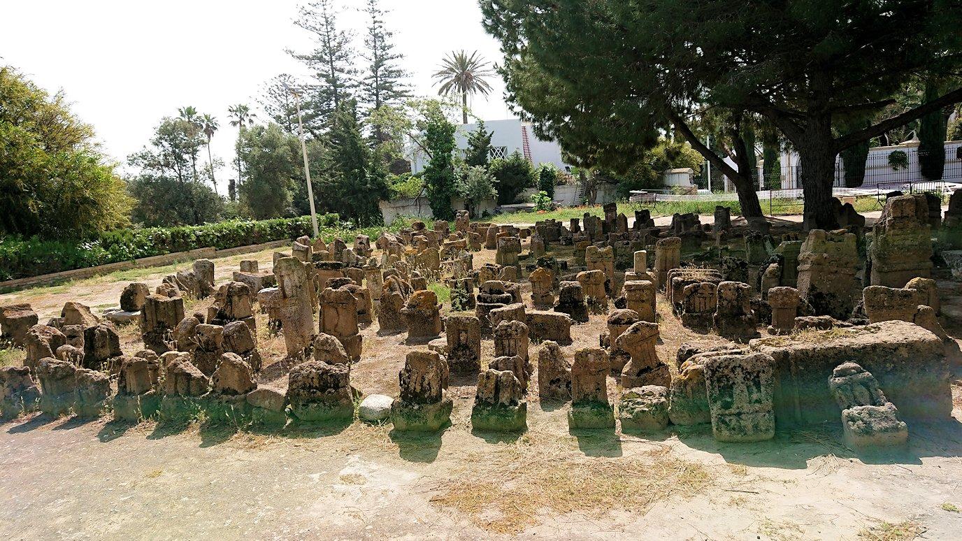 チュニジア:カルタゴ遺跡のトフェ(タニト神の聖域)に向かう8
