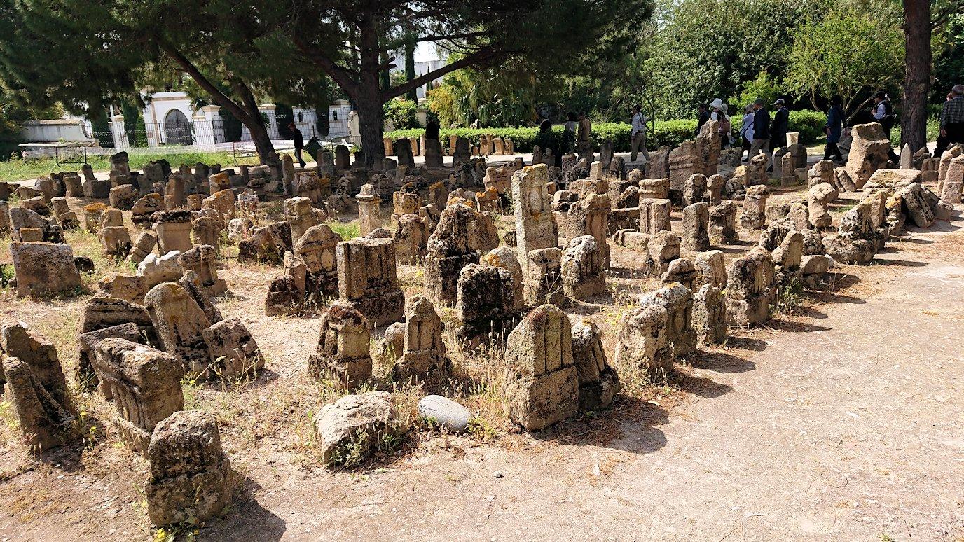 チュニジア:カルタゴ遺跡のトフェ(タニト神の聖域)に向かう9