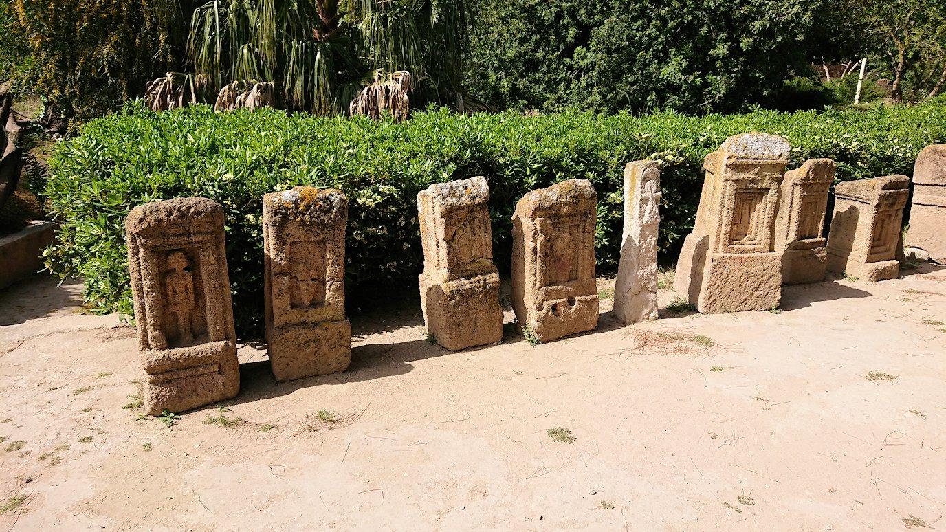 チュニジア:カルタゴ遺跡のトフェ(タニト神の聖域)を見学