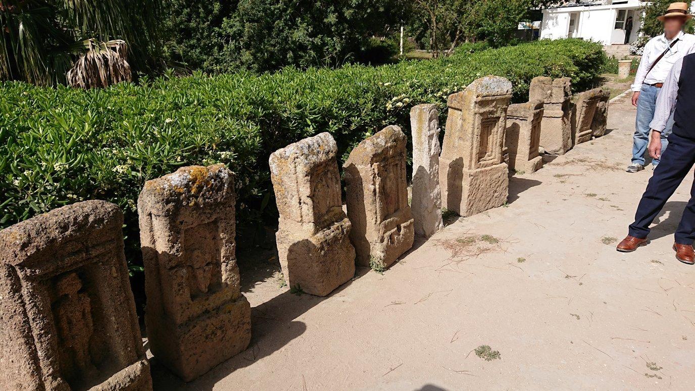 チュニジア:カルタゴ遺跡のトフェ(タニト神の聖域)を見学2