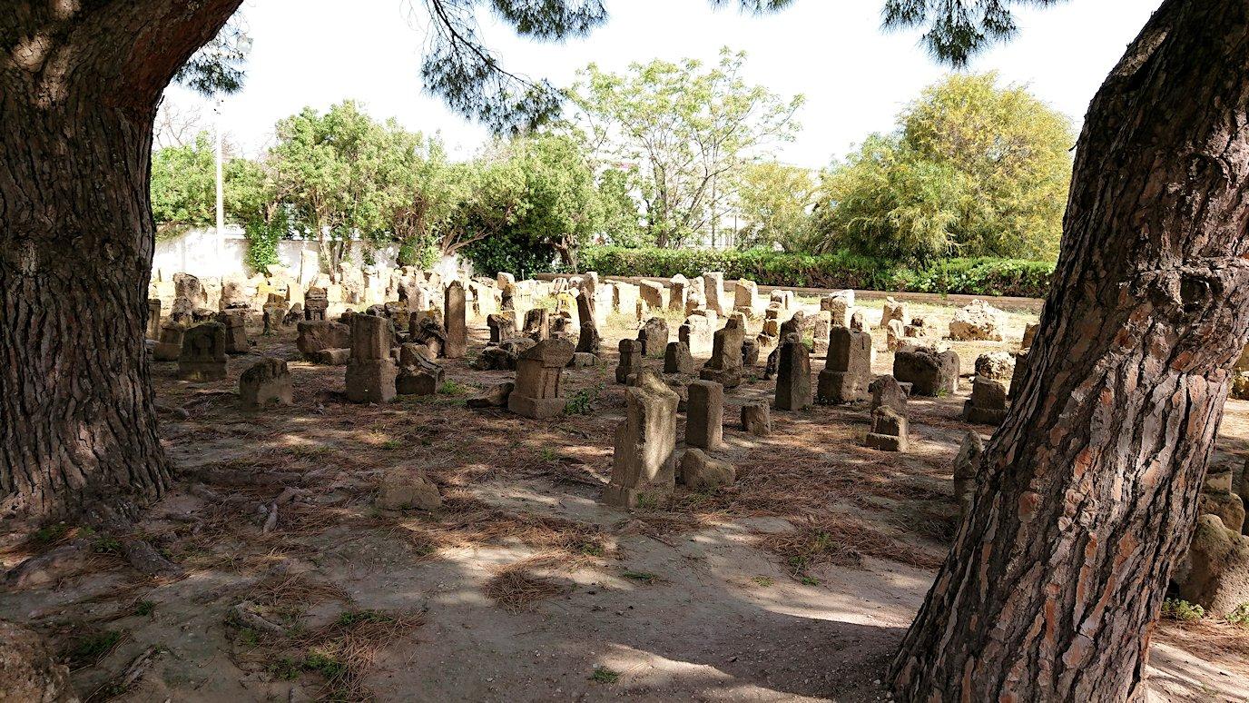 チュニジア:カルタゴ遺跡のトフェ(タニト神の聖域)を見学6