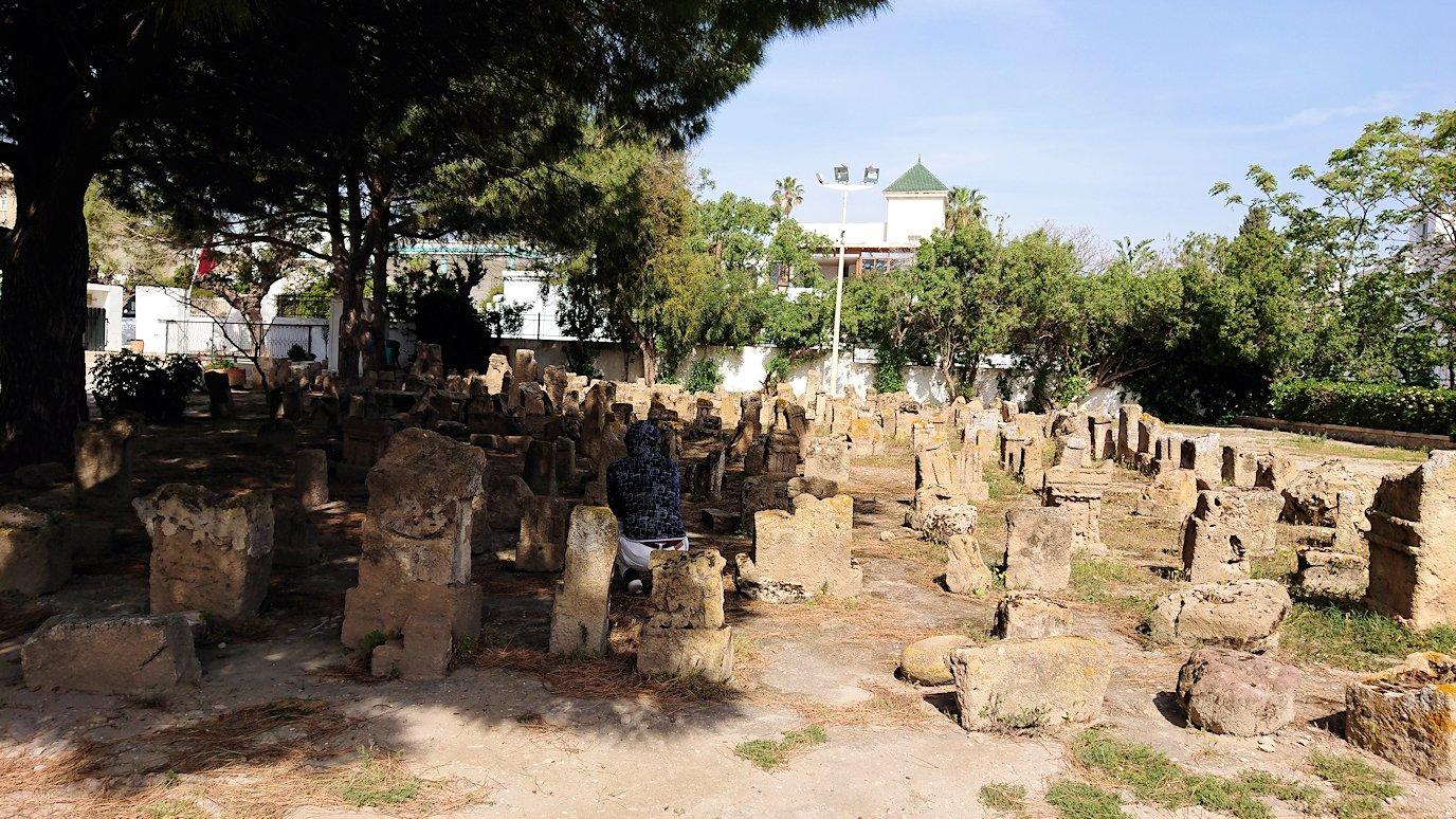 チュニジア:カルタゴ遺跡のトフェ(タニト神の聖域)を見学7