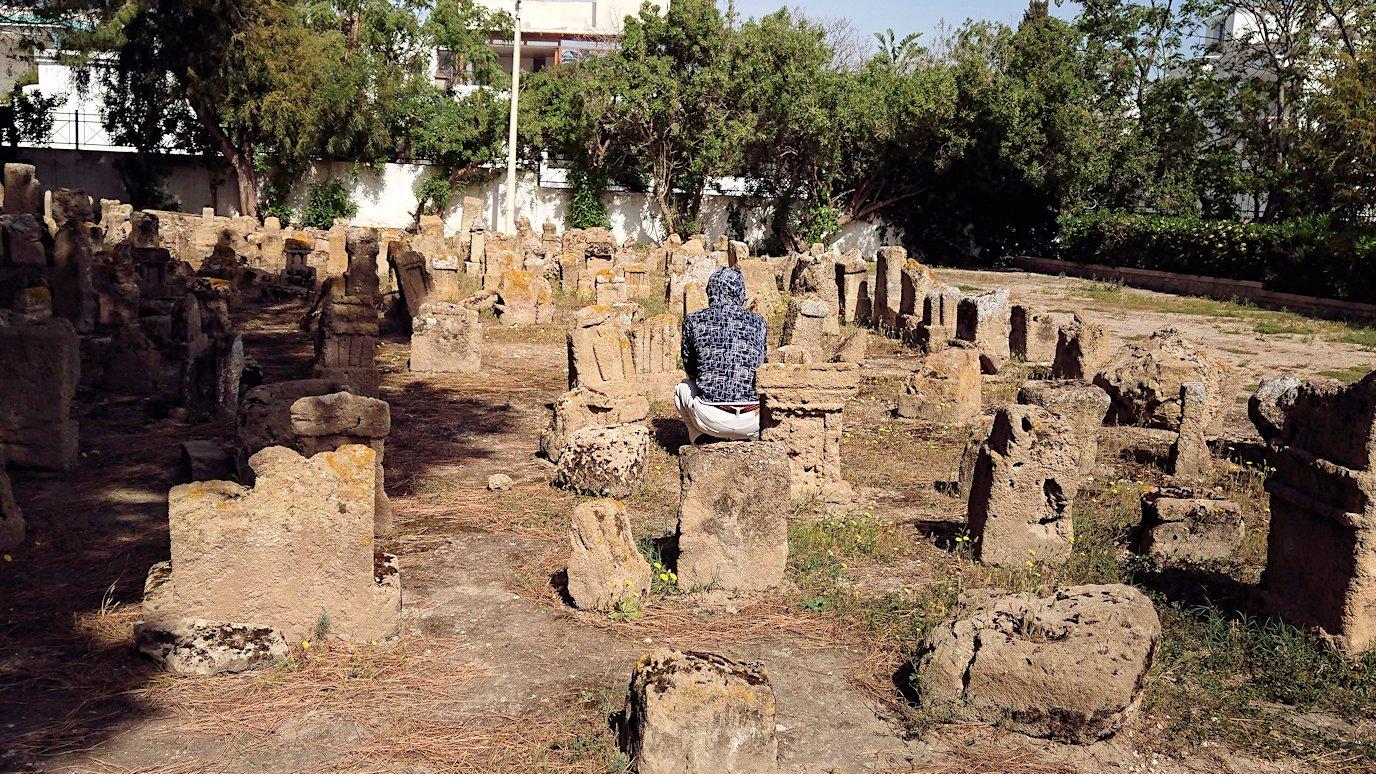 チュニジア:カルタゴ遺跡のトフェ(タニト神の聖域)を見学8