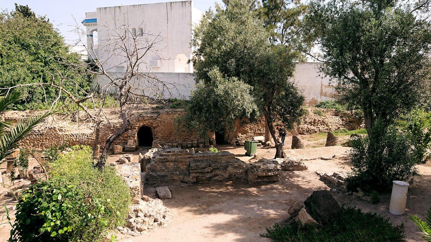 チュニジア:カルタゴ遺跡のトフェ(タニト神の聖域)を散策