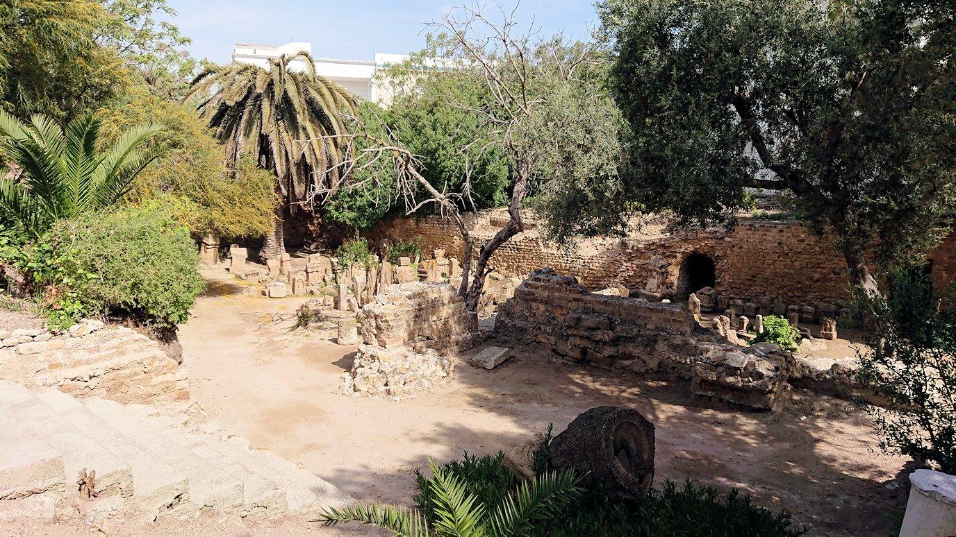 チュニジア:カルタゴ遺跡のトフェ(タニト神の聖域)を散策1