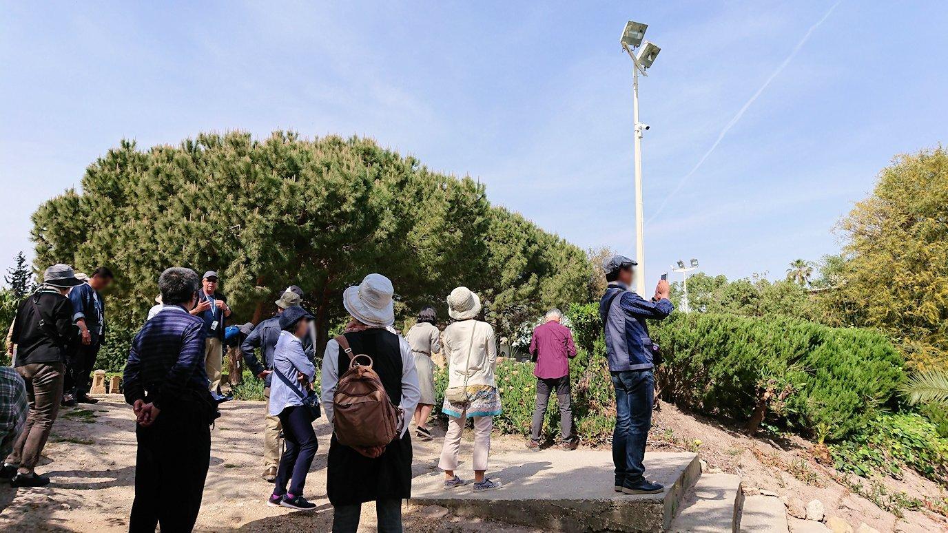チュニジア:カルタゴ遺跡のトフェ(タニト神の聖域)を散策2