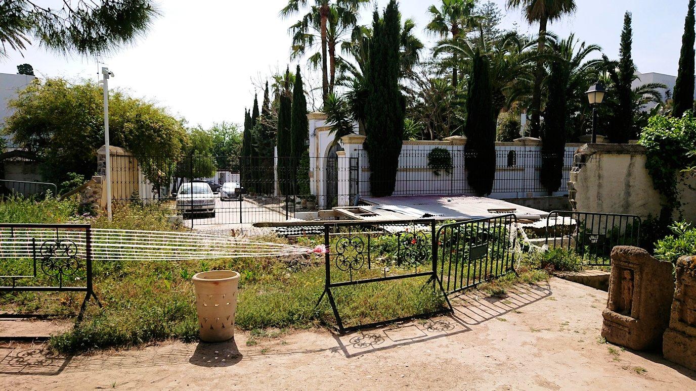 チュニジア:カルタゴ遺跡のトフェ(タニト神の聖域)を散策5