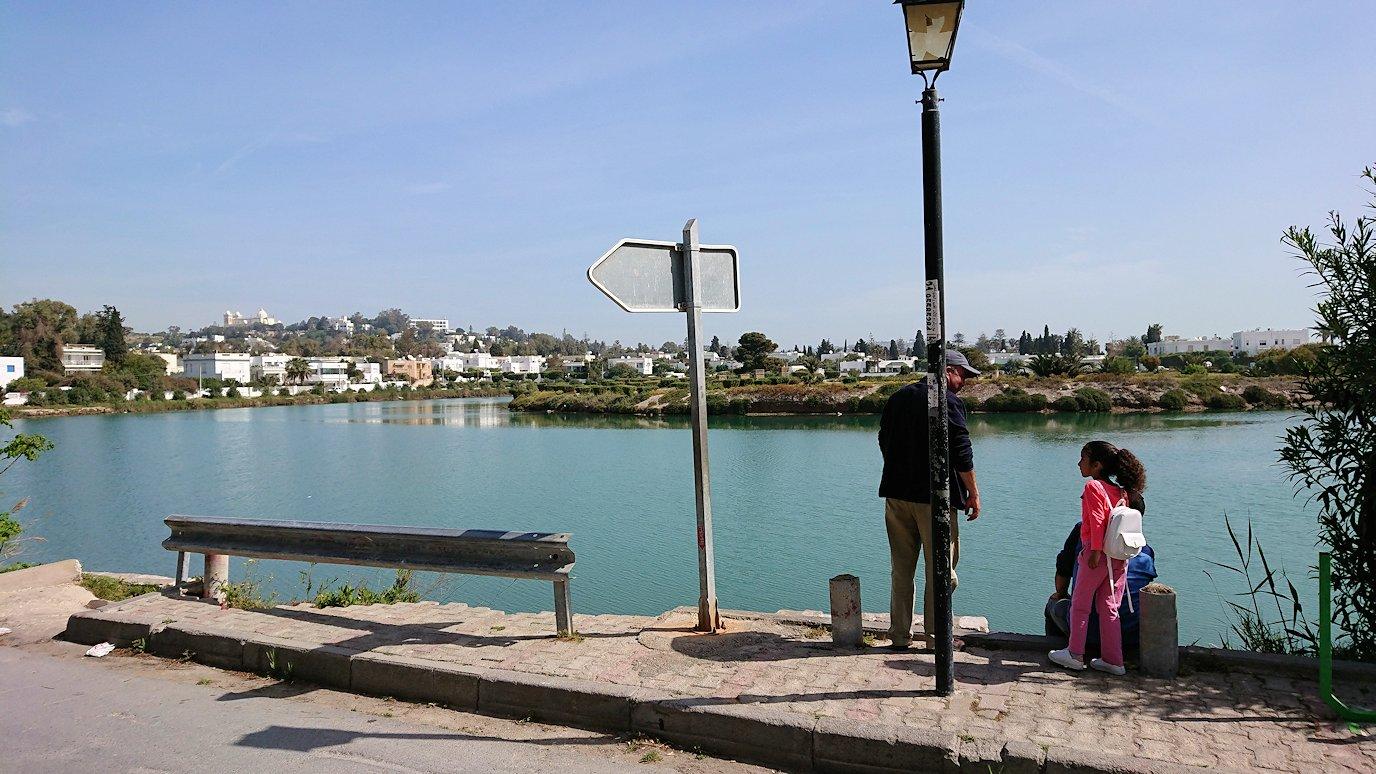 チュニジア:カルタゴ遺跡のトフェ(タニト神の聖域)を散策8