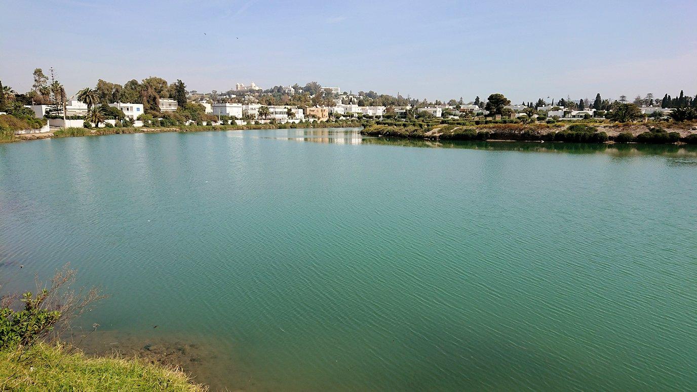チュニジア:カルタゴ遺跡のトフェ(タニト神の聖域)近くの湖にて1